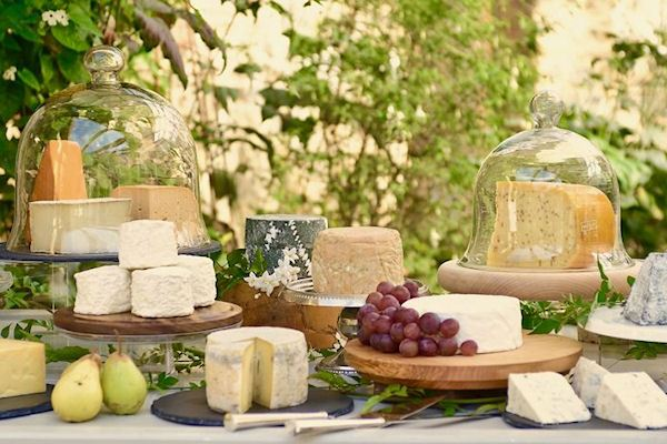 The Cheese Shed